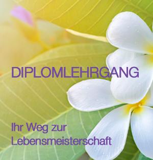 DIPLOMLEHRGANG